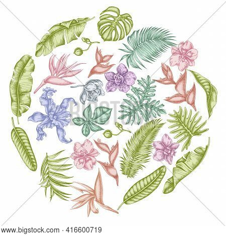 Round Floral Design With Pastel Monstera, Banana Palm Leaves, Strelitzia, Heliconia, Tropical Palm L