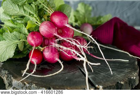 Young Radish On The Table