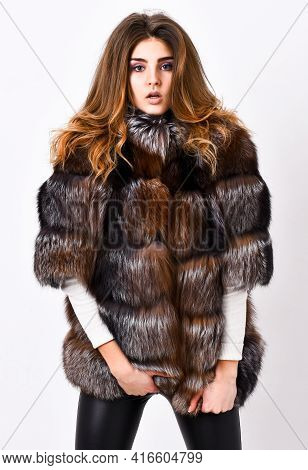 Winter Elite Luxury Clothes. Female Brown Fur Coat. Fur Store Model Posing In Soft Fluffy Warm Coat.