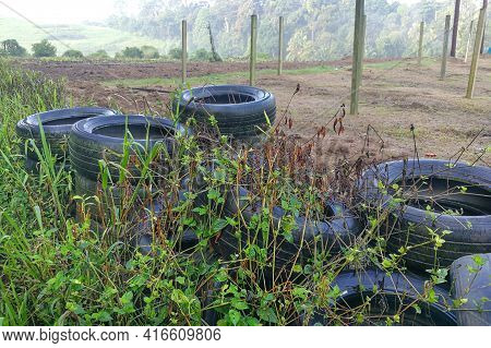 Abandoned Tyre Traps Rain Water, Ground For Mosquito Breeding Leading To Dengue, Malaria Infected Fe