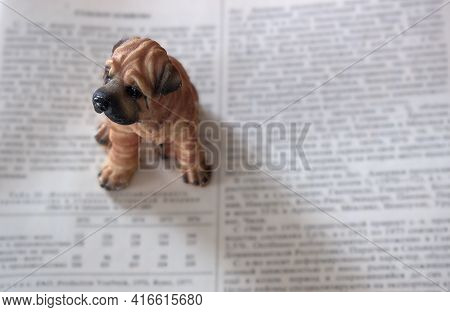 A Small Toy Dog Sits On An Unfolded Book . Only The Dog\'s Eyes Are In Focus. Blurred Text Backgroun