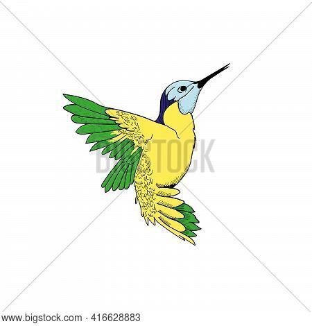 Flying Hummingbird Colibri Wit Bright Plumage Icon