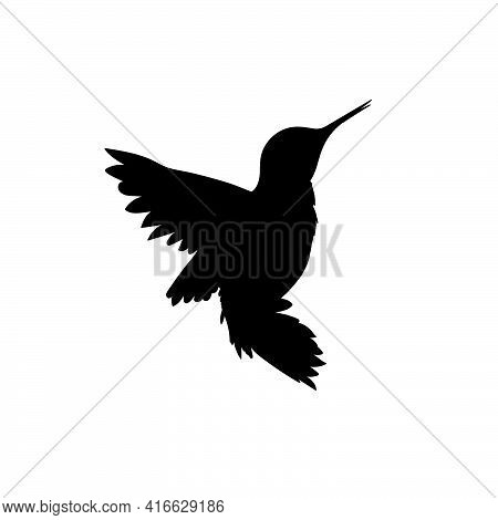 Hummingbird Black Icon. Small Exotic Bird Vector