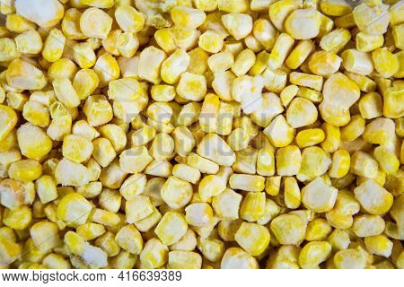 Corn Grains Are Quick-frozen Yellow, Useful Products Are Vitamins