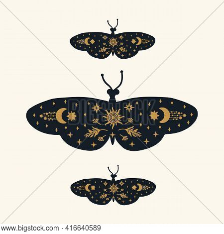 Poster Of Black Butterflies With Gold Patterns. Moths With Golden Doodles On The Wings Of Soaring Da