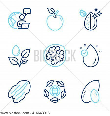 Nature Icons Set. Included Icon As Eco Organic, Dirty Water, Pecan Nut Signs. Peanut, Walnut, Vitami