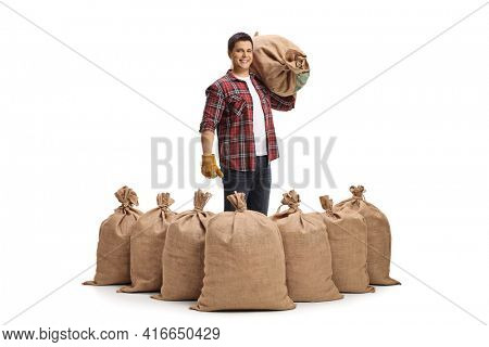 Full length portrait of a farmer with a pile of sacks and one sack over his shoulder isolated on white background