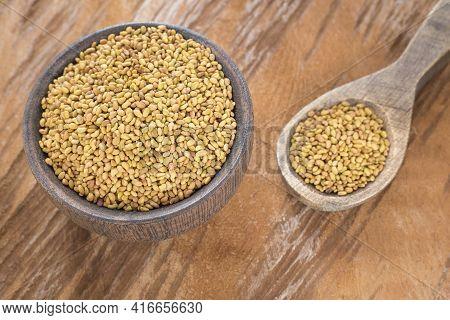 Medicago Sativa - Organic Alfalfa Seeds In The Wooden Bowl