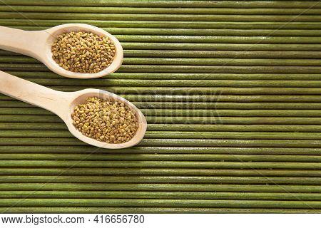 Organic Alfalfa Seeds In Wooden Spoon - Medicago Sativa