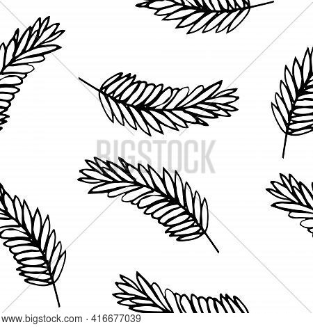 Spikelet Seamless Pattern. Hand Drawn Doodle Style. Vector, Minimalism, Monochrome, Sketch. Wrapping