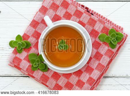 Herbal Tea From Indian Borage, Plectranthus Amboinicus. It Is Used As Curative And Food Plant. Good