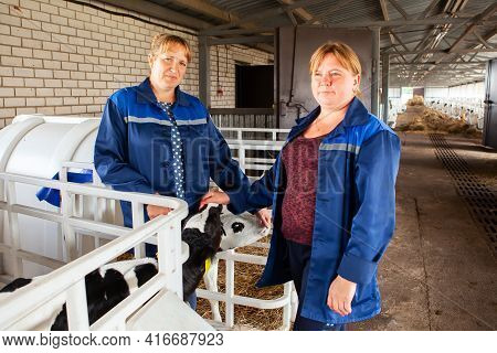 Belarus, Vitebsk Region, March 31, 2021. Two Female Workers Working On A Dairy Farm, Taking Care Of