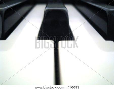 Piano Key1