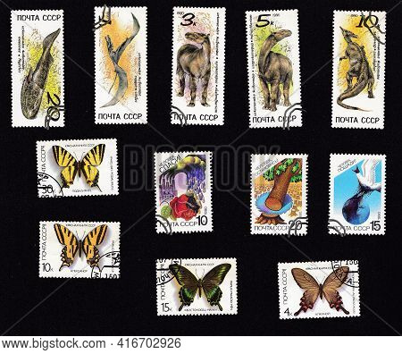 Ussr - Circa 1990: A Set Of Postage Stamps. Collage With Fauna. Dinosaurs And Butterflies. Drawing O