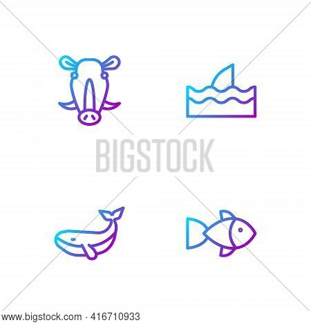 Set Line Fish, Whale, Wild Boar Head And Shark Fin In Ocean Wave. Gradient Color Icons. Vector