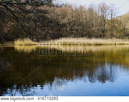 Beautiful Calm Small Lake Surrounded By Trees Near Faaborg Denmark - Nature And Outdoors Travel Back