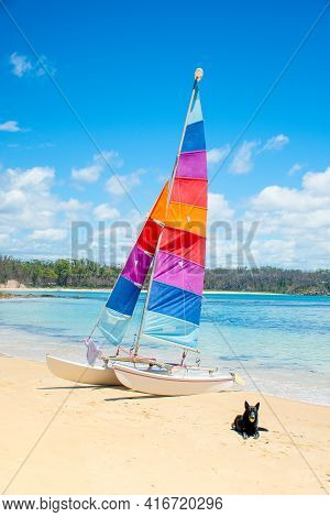 Sailing Boat With Colorful Sail On Sandy Beach Near The Ocean Bay. Black Dog Laying On The Sand. Tra