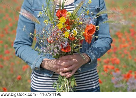 Beautiful Young Woman In Denim Jacket Is Holding Bouquet Of Wildflowers. Female Hands Hold Large Bou