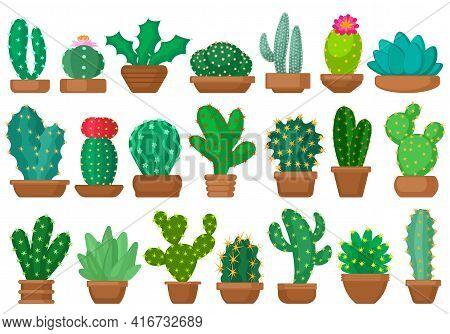 Houseplant Cacti Vector Cartoon Set Icon. Vector Illustration Cactus On White Background. Isolated C