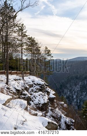 Pine Trees On A Snow Covered Hillside In The Winter Season.