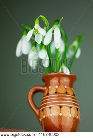 Beautiful White Flowers Snowdrops Or Galanthus Bouquet In Vase Close-up Black Background. Dark Moody