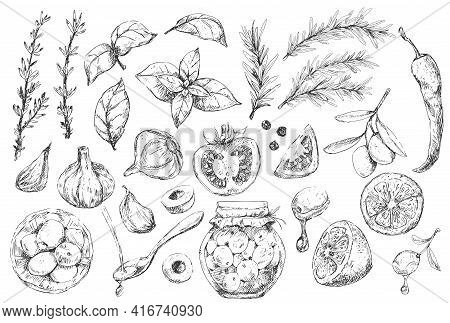 Set Of Mediterranean Cuisine Elements And Spices
