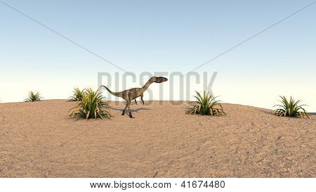 coelophysis on sand terrain