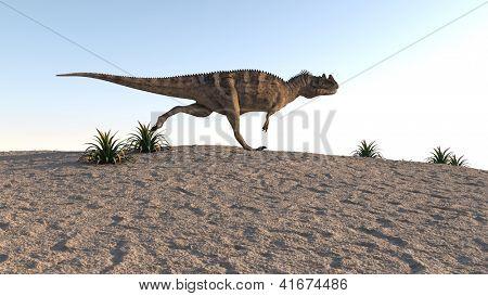 cerantosaurus on sand terrain poster
