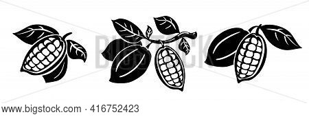 Cocoa Beans Vector Illustration. Cocoa Beans On A Branch With Leaves Isolated On White Background