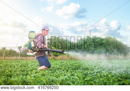 Male Farmer With A Mist Sprayer Processes Potato Bushes With Chemicals. Protection Of Cultivated Pla