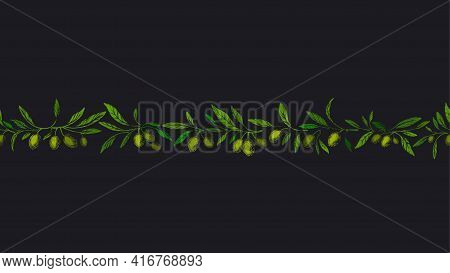 Olives Seamless Pattern. Vector Art Border. Botanical Engraved Illustration. Green Raw Fruit, Textur