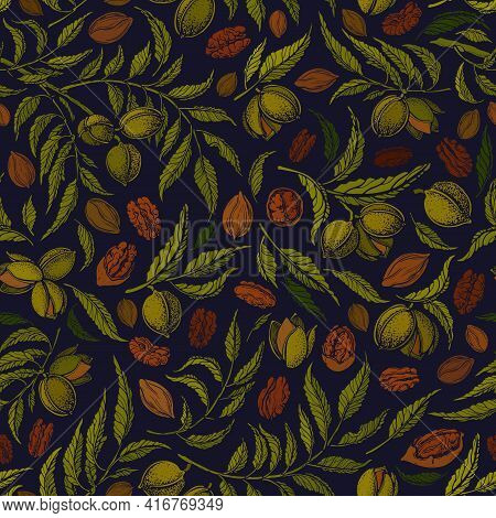 Pecan Seamless Pattern. Vector Botanical Tree, Texture Nuts, Green Foliage. Vintage Hand Drawn Graph