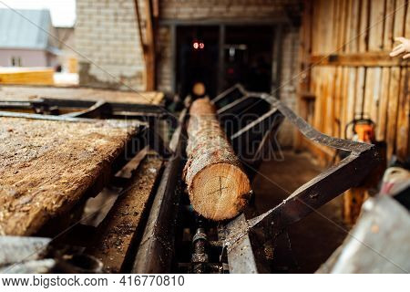 A Log On A Conveyor Belt. Transportation Of Wood Raw Materials At The Plant. Wood Processing On A Sa
