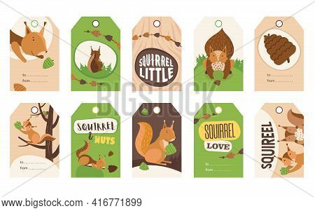 Stylish Special Tag Designs With Cute Cartoon Squirrel Character. Orange Or Brown Little Mammal Hold