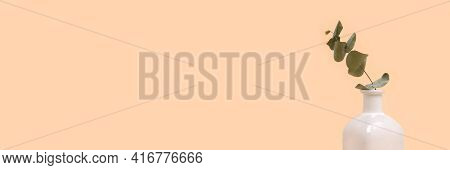 Banner With One Eucalyptus Flower Branch In Vase In Front Of Beige Background. Simplicity Compositio