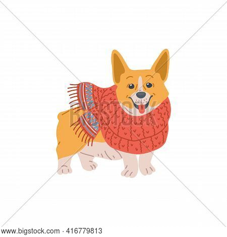 Small Funny Corgi Dog In Knitted Wool Scarf, Flat Vector Illustration Isolated.