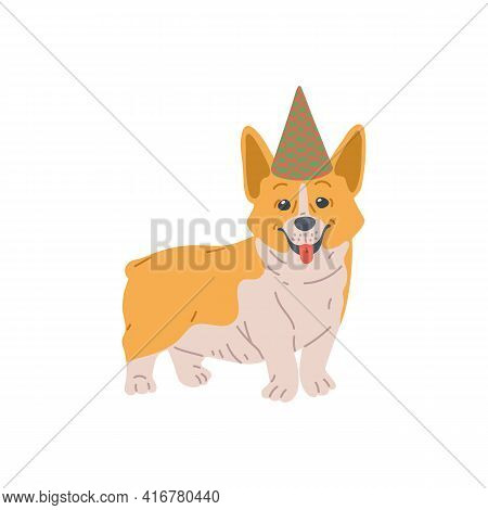 Dog Breed Pembroke Welsh Corgi, Purebred Pet In Holiday Canine Hat, Cute Animal.
