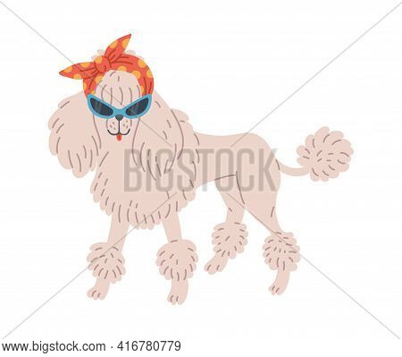 White Poodle Dog Or Puppy Cartoon Character, Flat Vector Illustration Isolated.