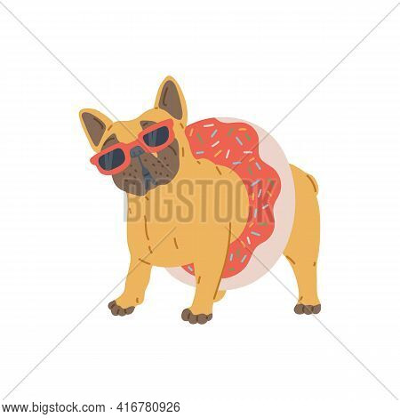 Fat Pug Dog In Sunglasses And With Lifebuoy, Flat Vector Illustration Isolated.