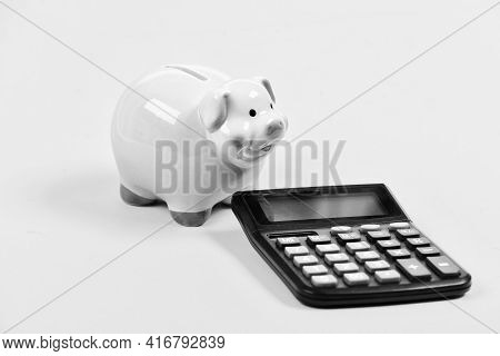 Piggy Bank Pig And Calculator. Taxes And Charges May Vary. Accounting Business. Taxes And Fees Conce