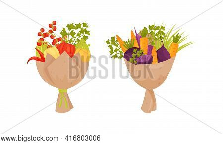 Bouquet Of Fresh Vegetables With Green Parsley Herb Wrapped In Craft Paper Vector Set
