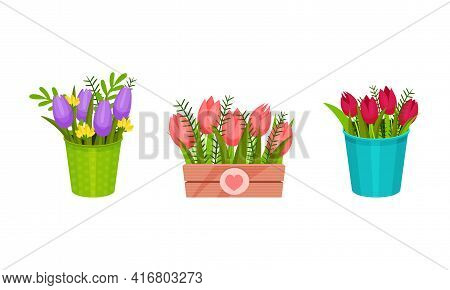 Garden Flowers In Different Containers And Fancy Pots Vector Set
