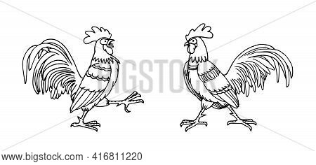 A Pair Of Combat Roosters, Farm Birds, Vector Illustration With Black Ink Contour Lines Isolated On