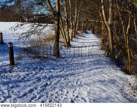 City Park Walking Footpath Covered With Snow Great For Winter Outdoors Activity