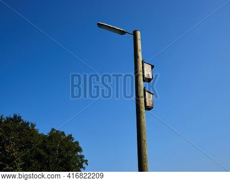 Bird House On An Electricity Pole With Clear Blue Sky Background And Space For Text And Graphics
