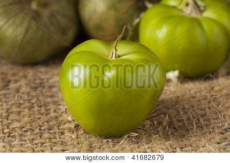 Fresh Green Organic Tomatillo