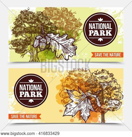 Horizontal National Park Banners With Sketch Deciduous Trees And Leaves Isolated On Grey Background