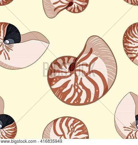 Nautilus Shells Colorful Doodles Seamless Pattern. Background Template Of Stock Sea Shells For Wrapp