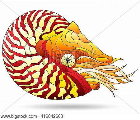 A Stained Glass-style Illustration With A Bright Nautilus Clam, An Animal, Isolated On A White Backg