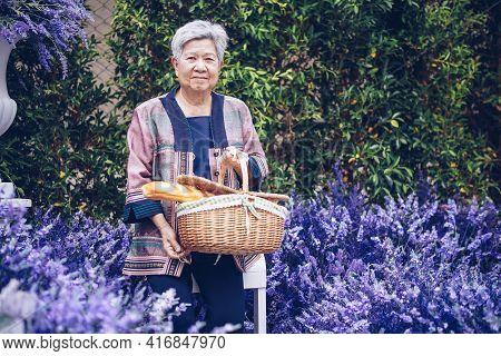 Asian Old Elderly Elder Woman Holding Picnic Basket In Lavender Flower Garden. Senior Leisure Lifest